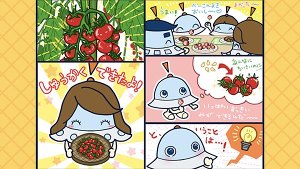謎解きワオっち2月号「おいしい かていさいえん」を配信したよ!